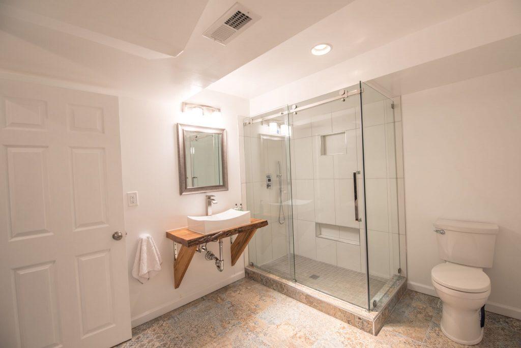 Dunwoody Bathroom Remodel in Basement with Custom Shower